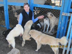 Irina und Hunde