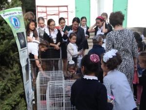 Tag der offenen Tür Tierheim